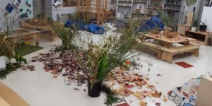 Natural materials spread out, ready to workshop.
