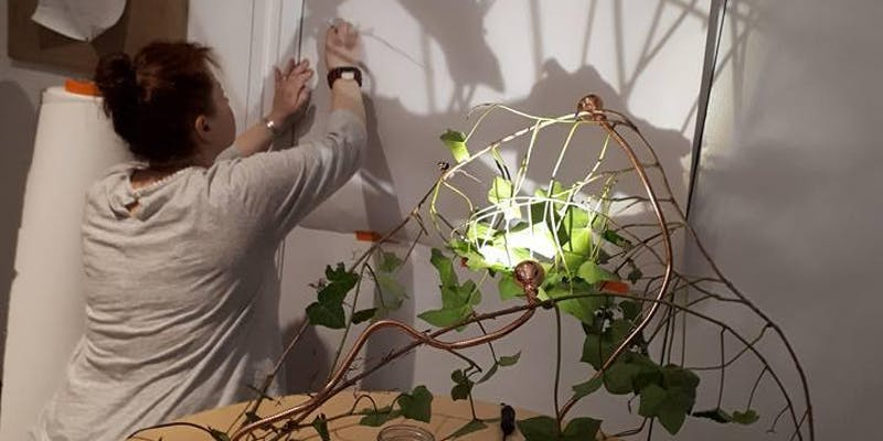 A woman, photographed from behind, writes on a white board. An artistic creation involving plants, string, and a light fixture is in the foreground.