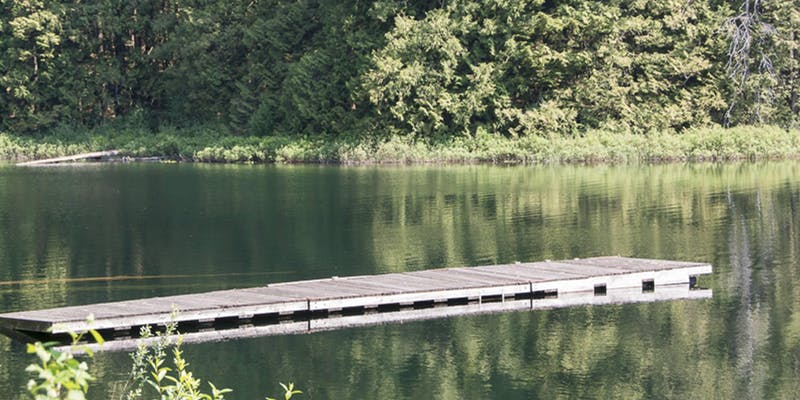 A wooden wharf extending into a lake. The trees are reflected in the water.