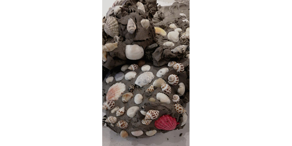A large chunk of clay with various seashells pressed into it.