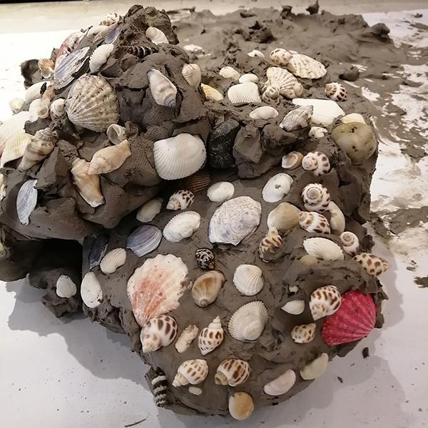 Hugo's Fossils