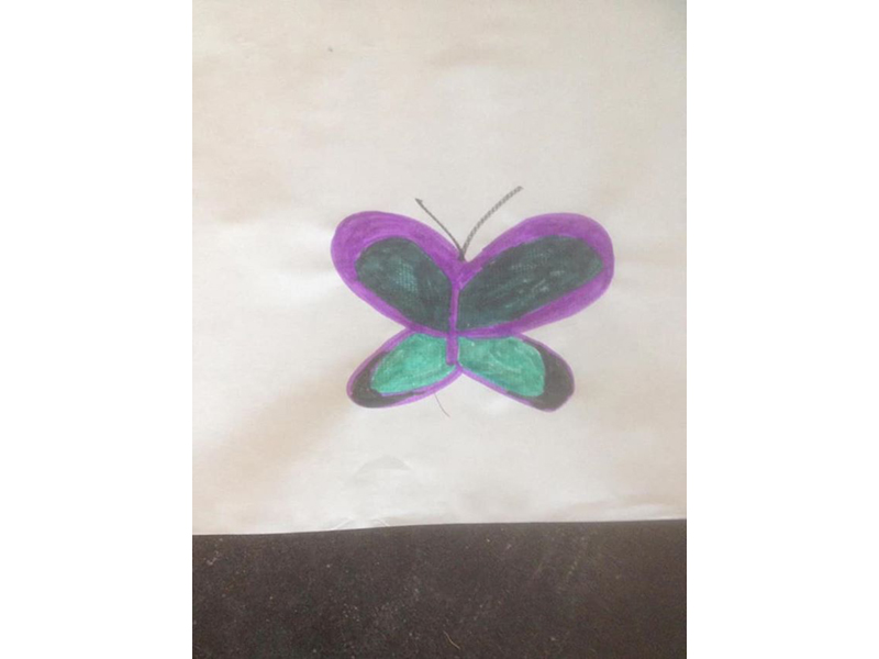 a drawing of a burterfly. the wings are purple and black and turquoise