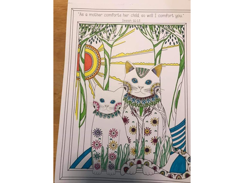 a colouring page of two cats