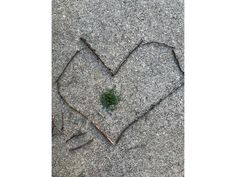 a heart-shaped assembly of small twigs with a small mound of green leaves in the centre